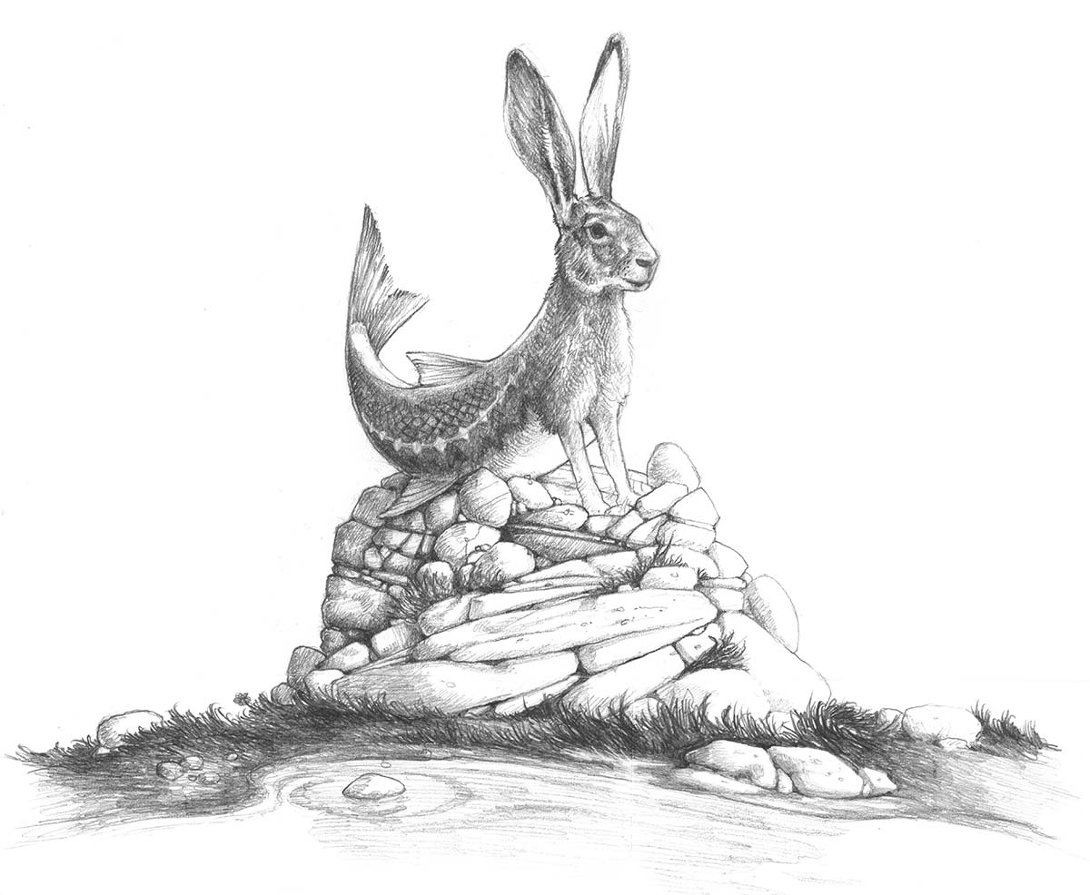 Rabbass Sketch
